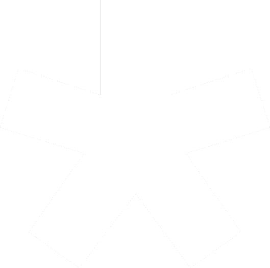 Norm_asterisk_white_Transparent